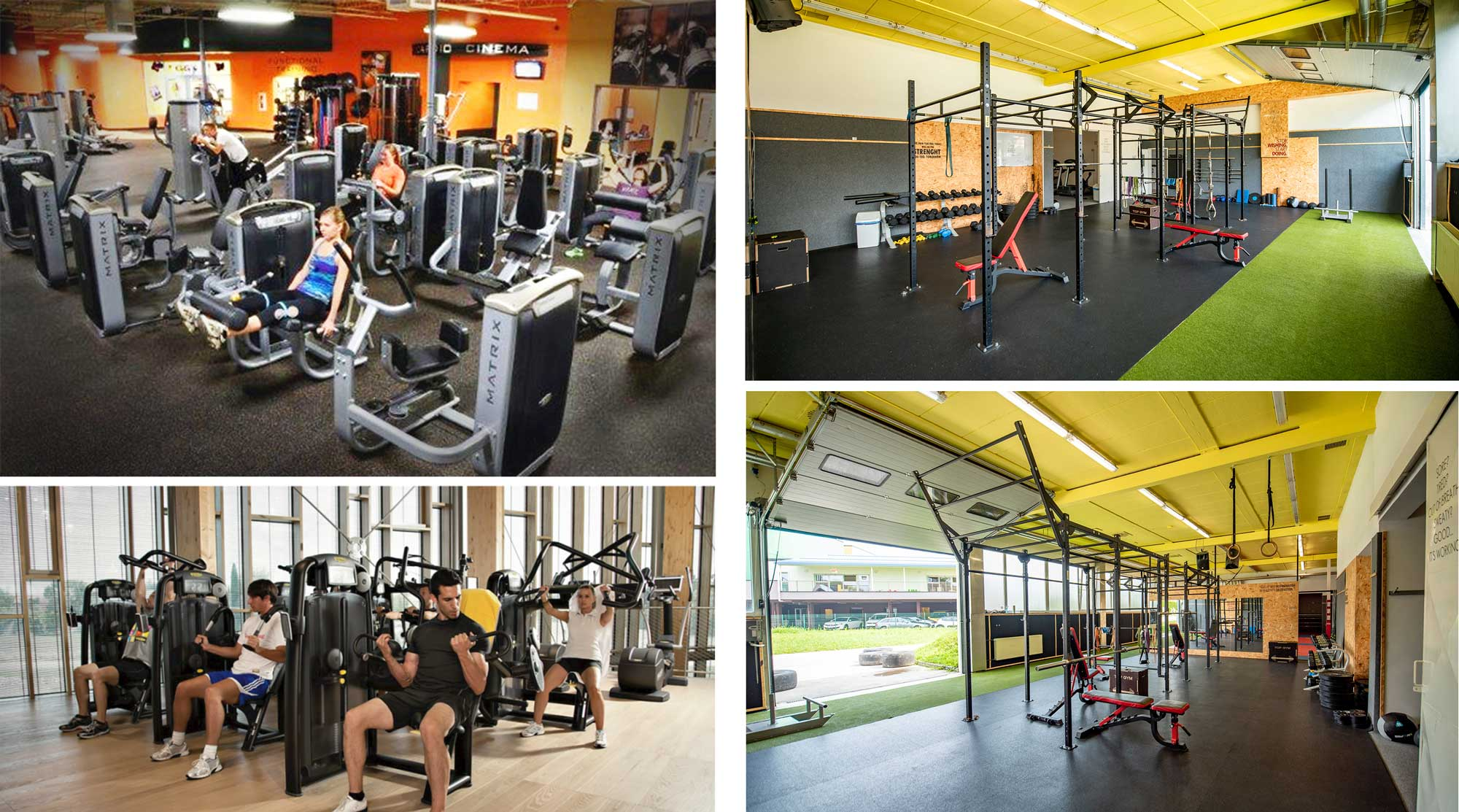 fitnes ali gym