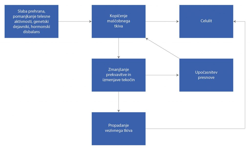 prednosti maderoterapije